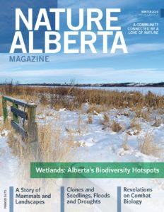 NA-Magazine-Winter-2020_cover-232x300