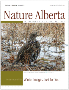 NAMagazine_Winter2019_cover-232x300