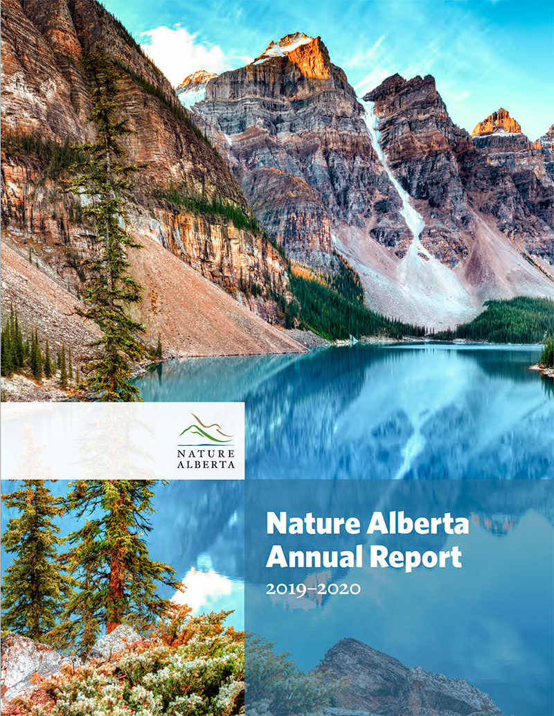 Cover of the 2019-2020 Annual Report
