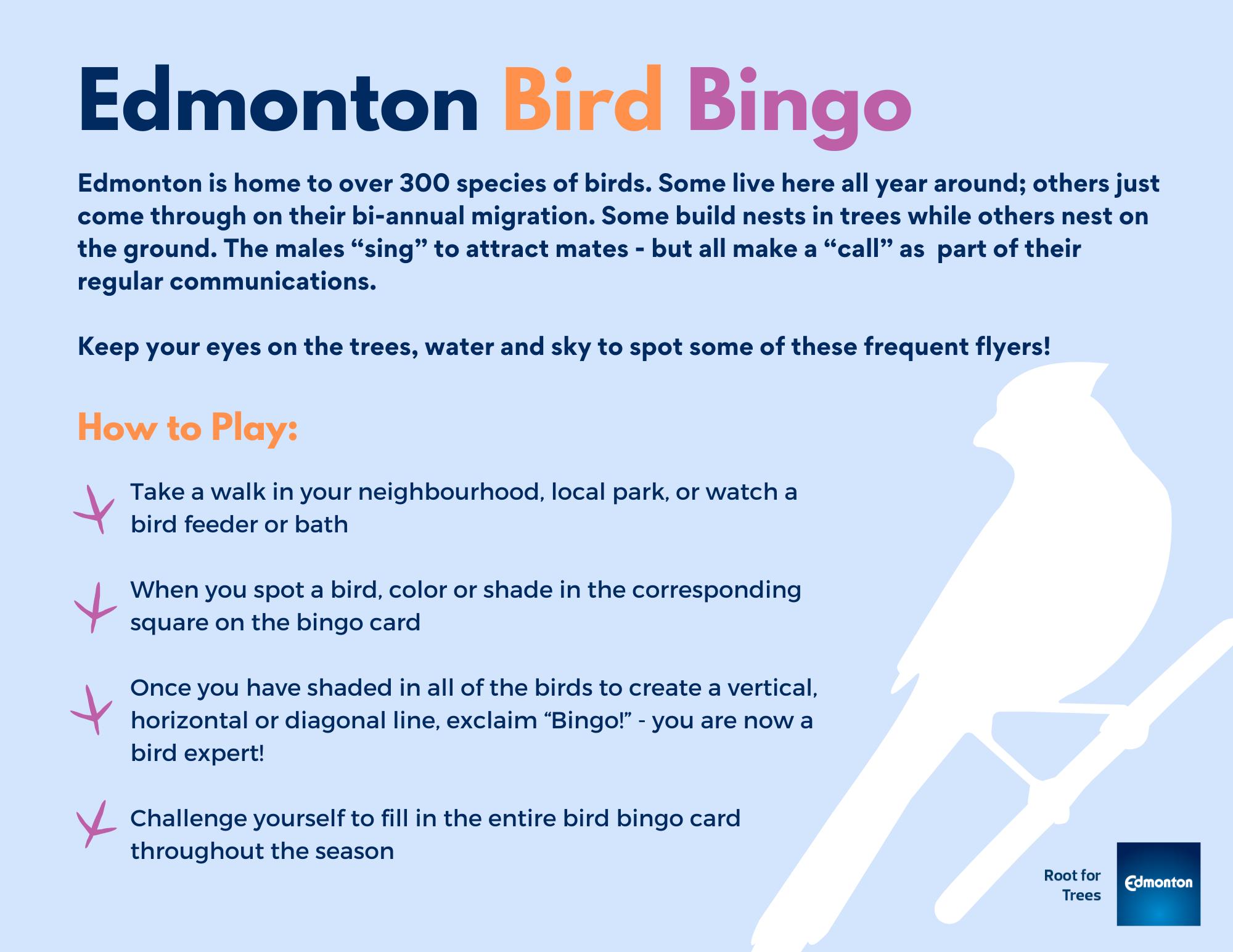 Edmonton Bird Bingo Instructions